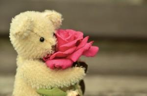 teddy-889814_640