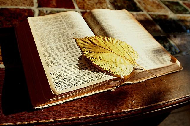 bible-1166260_640