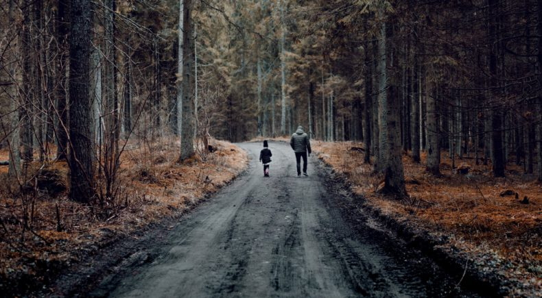 two people walking on road between trees